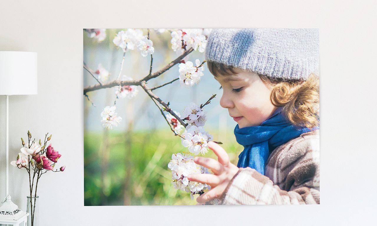 Poster Frühling